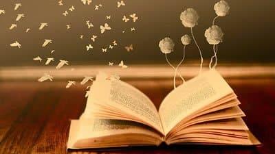estante_livros_2012